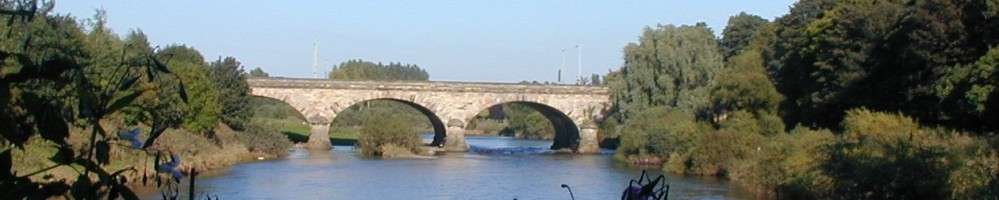 eden-bridge2